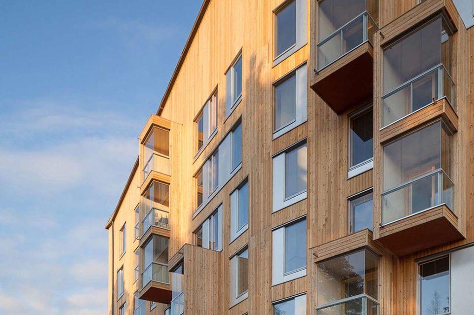 Предлагают разрешить строительство многоэтажных домов из дер.